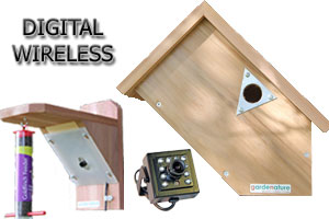 Digital Wireless Colour Bird Nestbox & Feeder Ultra HI-RES Side Camera System with Night Vision