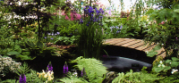 Bridge 10 - 5ft curved bridge (no handrails) - stained Dark Oak. Chelsea Gold Medal winning exhibit of the Alpine Garden Society. Stock item. £220