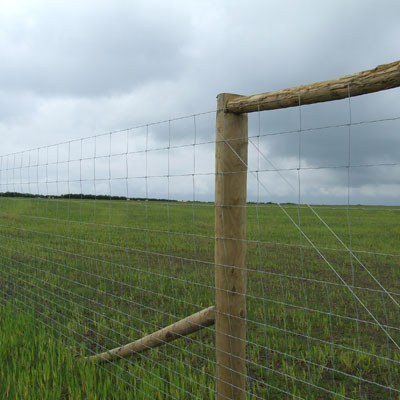 Deer  exotic game fence and ranch fencing by LE Fence Company