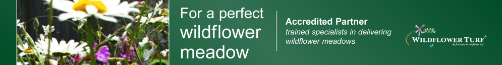 Accredited Partner Wildflower Turf