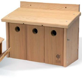 Nesting roosting boxes nest boxes bird boxes owl for Sparrow birdhouse plans