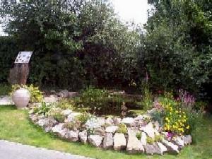 Wildlife ponds dry stone walls tree work fencing for Wildlife pond design uk